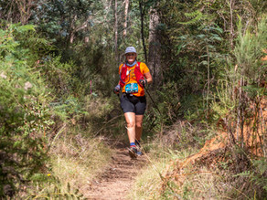 The Archie 50km Race Report