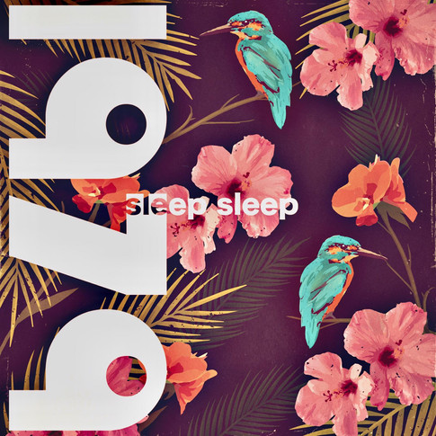 Cover for Sleep Sleep 1979