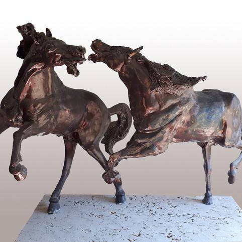מאבק סוסים