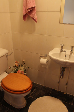 first floor WC & shower in 2 Oliver Terr