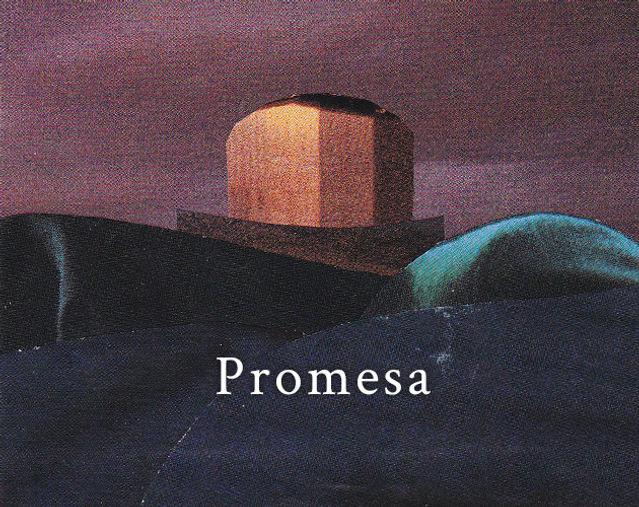 Julian Palacios _ Promesa
