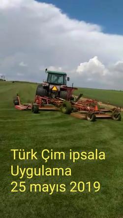 ipsala türkçim (1).jpg