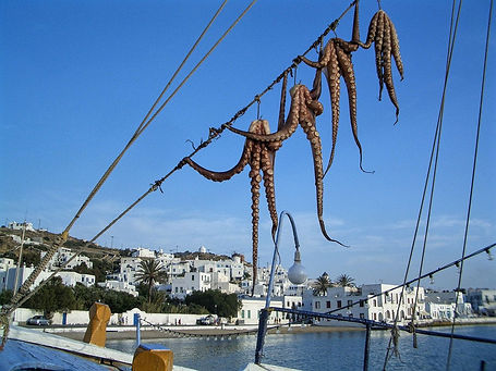 Explore the Greek Islands with Cultured Adventurer