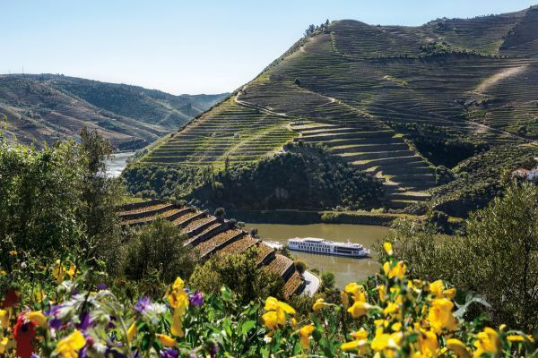 Choose a cruise on the Douro river to learn about and sample Port wine
