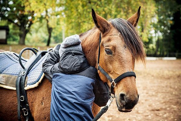 Tiergestützte Arbeit mit Pferden
