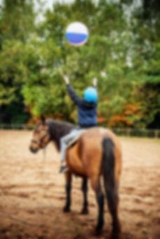 Therapeutisches Reiten, Tiergestützte Pädagogik mit Pferd