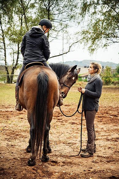 Coaching und Fachberatung mit Tieren