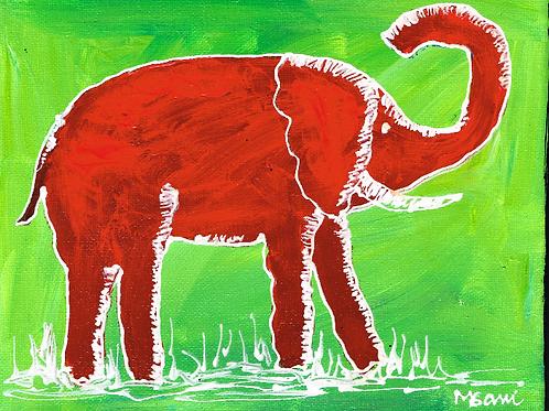 Elephant 521