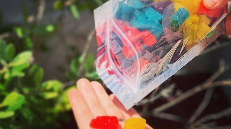 CBD Gummy variety pack