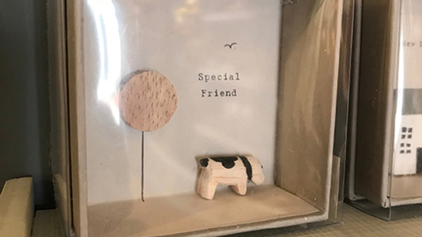 Boxed Gift Card 'Special Friend' by 'East of India'