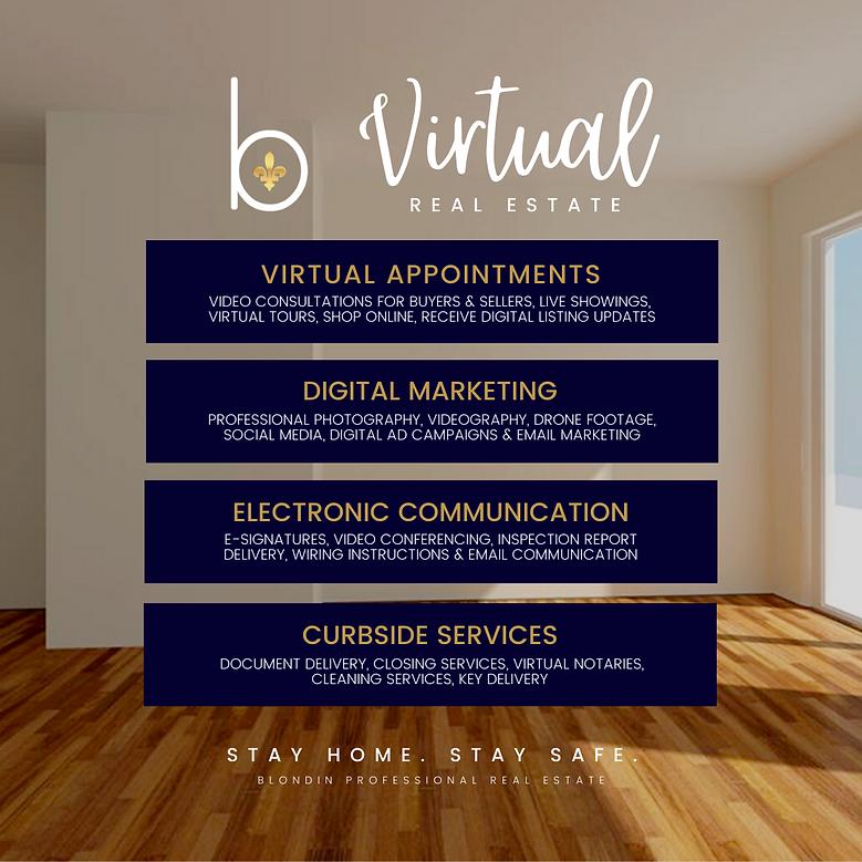 VirtualRealEstate (1).png