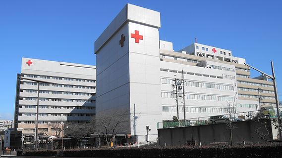 hospital 1.jfif