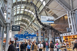 10 Amazing Airport Amenities