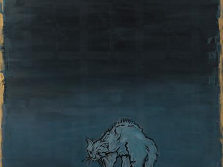 פריד אבו שקרה - חתול רחוב