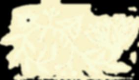 DSC09194-detail3flip.png