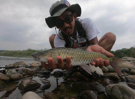 ジェンザイという台湾マシールを瀑釣した川「前頭渓」