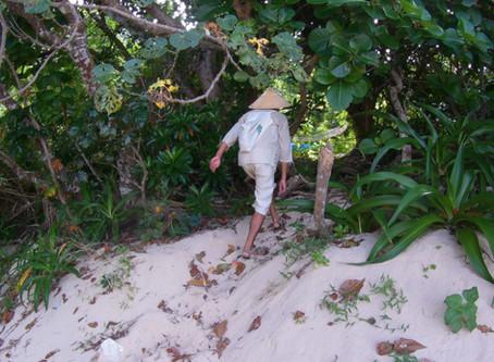 西表島のジャングルに住む人を訪ねて
