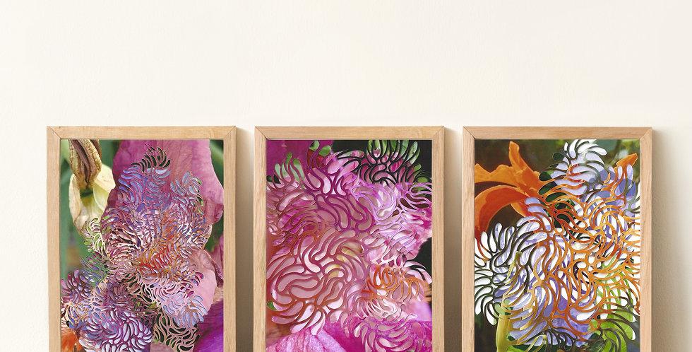 Lou's Garden Mini Prints