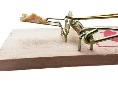 Most humane mousetrap