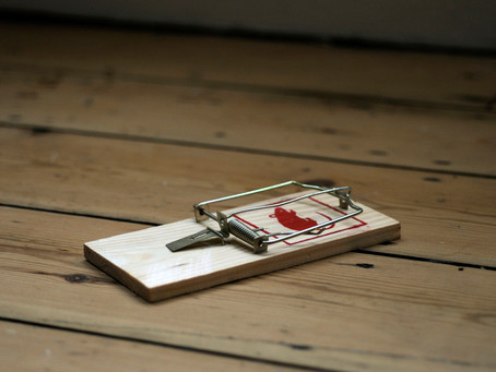 Tips for placing mousetraps