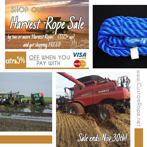 Nov Harvest Flyer.jpg