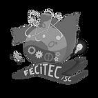 Fecitec logo_edited.png
