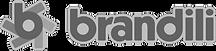 Logo Brandili sem Slogan_edited.png