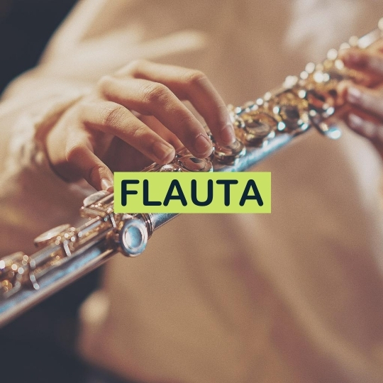aulas de flauta