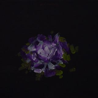 floral10.jpg