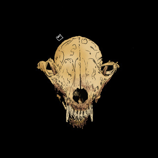 skull s6 tees.jpg