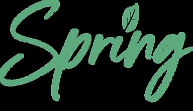 Spring DTS