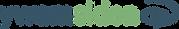 ywamSKIEN-logo-2020.png