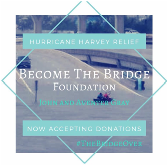 Become The Bridge Foundation
