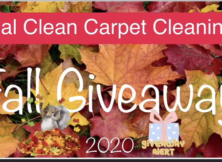 Win A Free Carpet Cleaning   1 day left to enter !!!!!