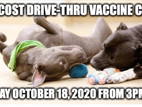 Low cost drive-through vaccines for my pet lovers 🐶😻Oct.18th 3-5pm