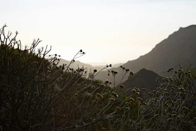 Landscape photography, gran canaria, Photographer Christina Bull