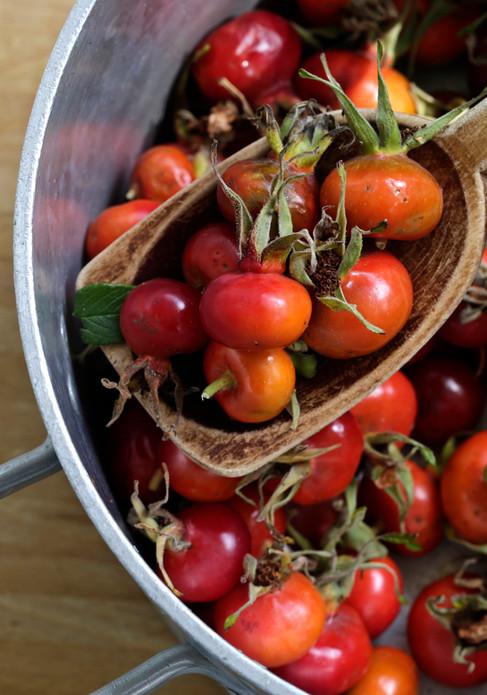 Food photography, rosehip, Food photographer Christina Bull