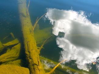 Ominous cloud reflected in water