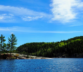 Granite shore and timber cliffs
