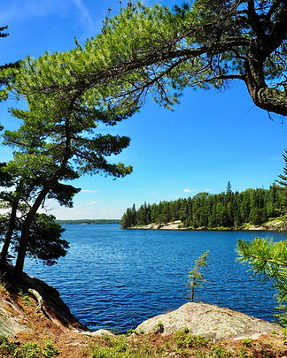 Ontario wilderness river framed by curving evergreens