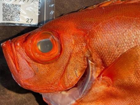 魚のトレーサビリティー