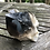 Thumbnail: Smoky Quartz Crystal Cluster