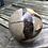 Thumbnail: Septarian Calcite Sphere