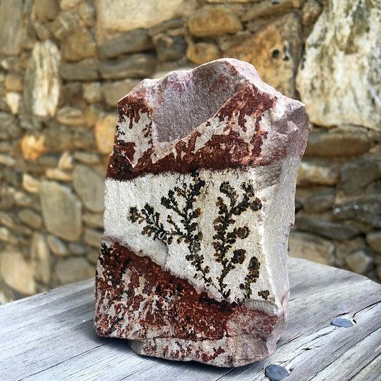 Dendritic Fern Stone