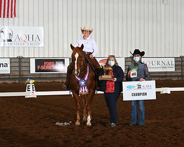 Sophia Harris wins the Western Dressage class at the 2020 AQHA World Show!