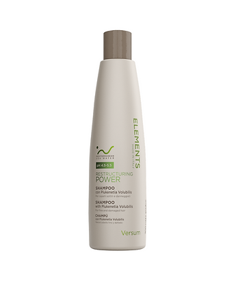 Restructuring Power Shampoo 300 ml