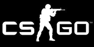 csgo (1).png