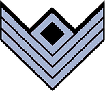 Chevrons_-_Infantry_First_Sergeant_-_CW.