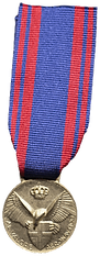 Medaglia al Valore Aeronautico.png