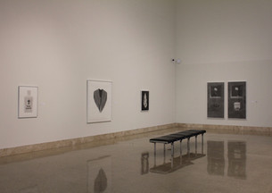 Art Museum of South Texas installation view